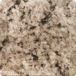 Granito Fossil