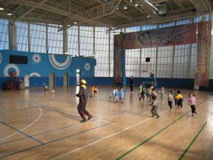 Siheung Gymnasium